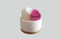 Petit cheesecake_modifié-1 copie_modifié-1